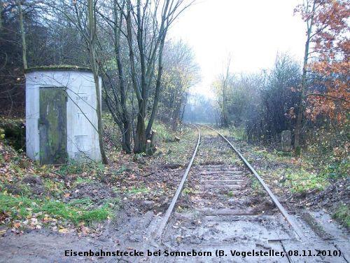Freigelegtes Streckengleis bei Sonneborn wartet auf den Abriss (Foto: Benedikt V.)